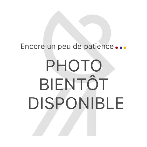 Photo bientot disponible